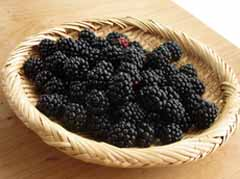7-20b-berry.jpg