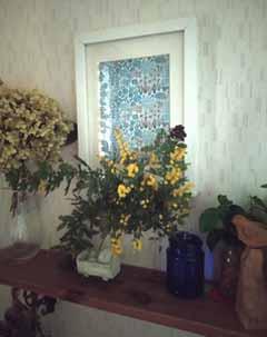 mimoza5.jpg
